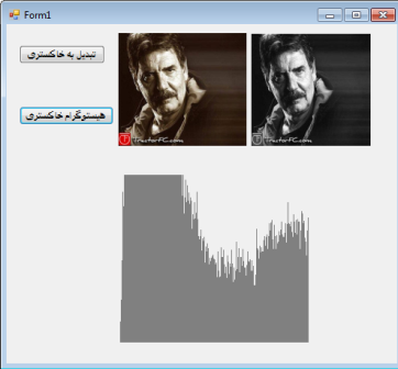 histogram-khakestari-c هیستوگرام تصویر خاکستری در سی شارپ C # csharp، پردازش تصویر
